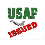 USAF Issued Small Poster