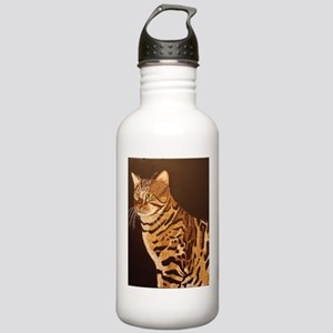 Bengal Kitty Water Bottle
