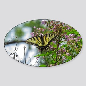 SwallowTail Butterfly Sticker (Oval)