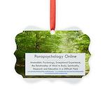 Parapsychology Online Complete Ornament