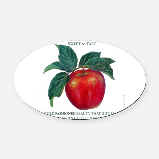 AMERICAN FAVORITE 10INCHES copy.jpg Oval Car Magne