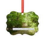 ParapsychologyOnline Website Ornament