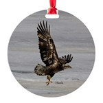 Hawk Round Ornament