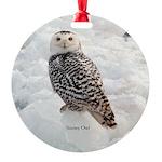 Snowy Owl Round Ornament