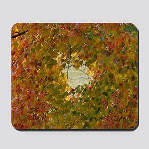 leaves changing Mousepad