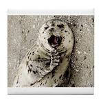 Harbor Seal Pup Tile Coaster