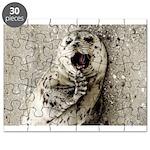 Harbor Seal Pup Puzzle