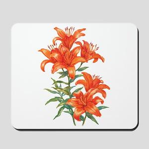 Orange Daylilies Mousepad