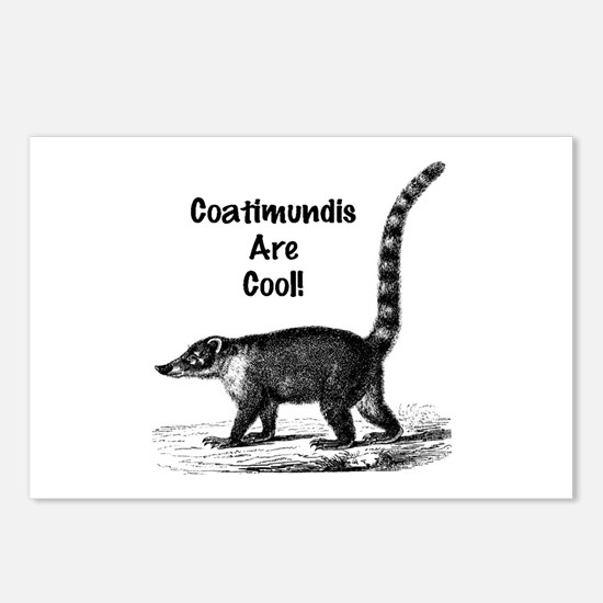 Coatimundis are Cool! Postcards (Package of 8)