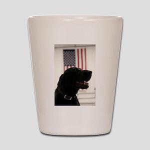All-American Black Labrador Retriever Shot Glass