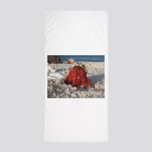 Friendly Hermit Crab Beach Towel