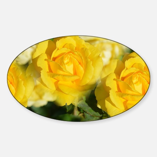 Yellow Roses Decal