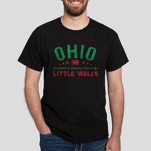 Little Wales Ohio Welsh T-Shirt
