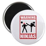 Warning: Ninjas Magnet