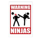 Warning: Ninjas Postcards (Package of 8)