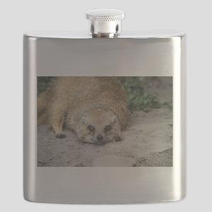 Smiling Mongoose Flask