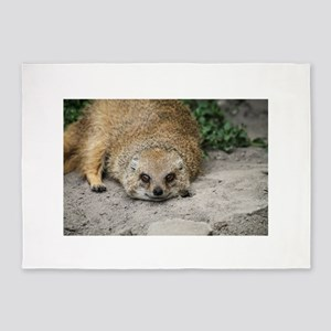 Smiling Mongoose 5'x7'Area Rug
