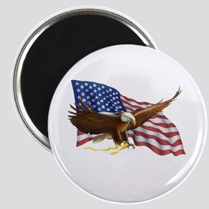 American Flag and Eagle Magnets