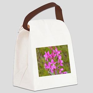 Alaskan fireweed flower in bloom Canvas Lunch Bag