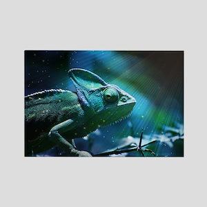 Chameleon Rectangle Magnet