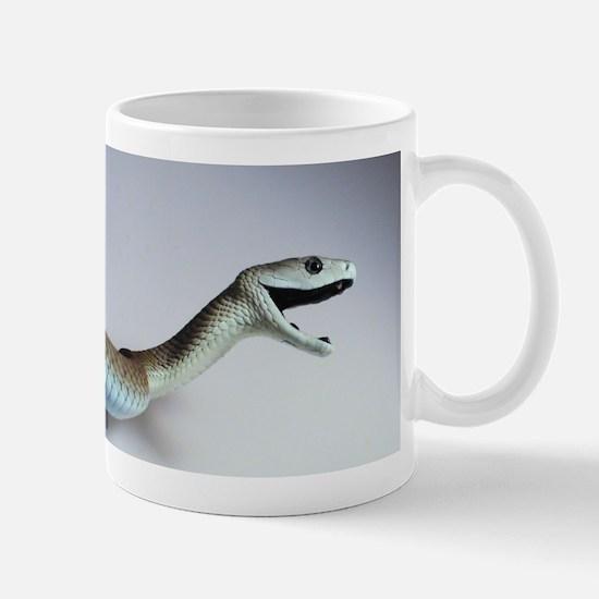 Polylepis Mugs