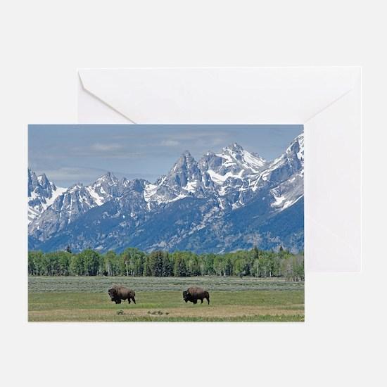 Teton Buffalo Greeting Card