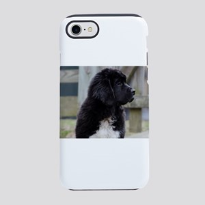 Landseer Newfie Puppy iPhone 8/7 Tough Case