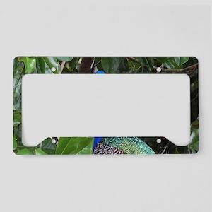 Peafowl License Plate Holder