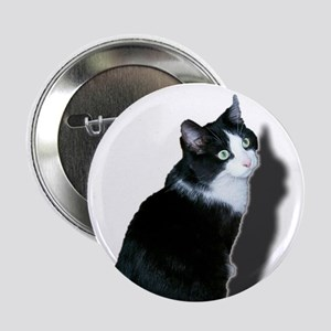 "Black & white cat 2.25"" Button (10 pack)"