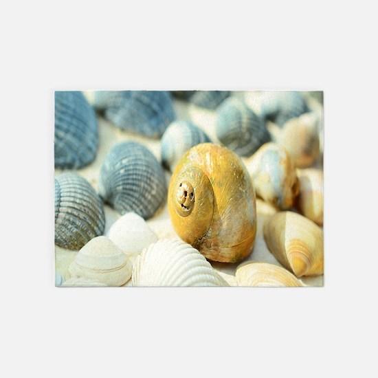 Sea Shells 5'x7'Area Rug