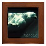 Canada Souvenir Beluga Whale Framed Tile Art