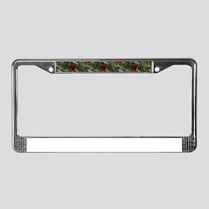 jurassic dinosaur License Plate Frame