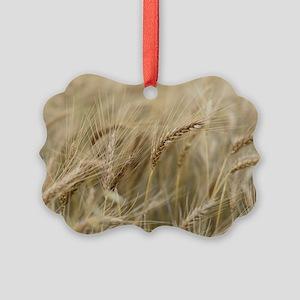Wheat Picture Ornament