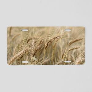 Wheat Aluminum License Plate