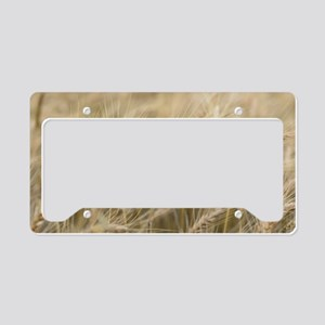 Wheat License Plate Holder