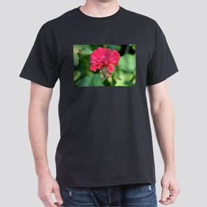 Geranium flower (red) in bloom T-Shirt
