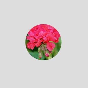 Geranium flower (red) in bloom in gard Mini Button