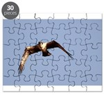 Osprey Eyes Puzzle