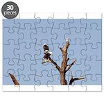 Eagle Perch Puzzle