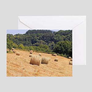 Round hay bales in field on El Camin Greeting Card