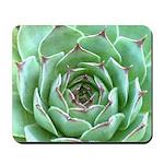 Succulent Mousepad