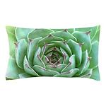 Succulent Pillow Case