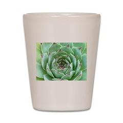Succulent Shot Glass