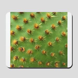 Green cactus Mousepad