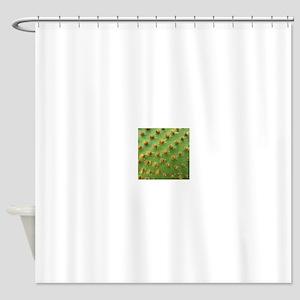 Green cactus Shower Curtain