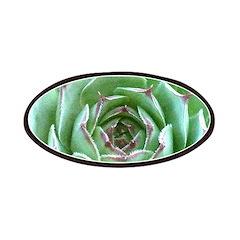 Succulent Patch