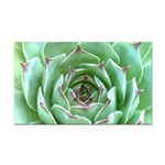 Succulent Rectangle Car Magnet