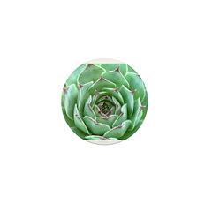Succulent Mini Button (100 pack)