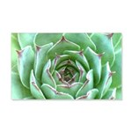 Succulent Decal Wall Sticker
