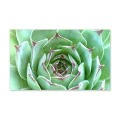 Succulent Decal Wall Sticker